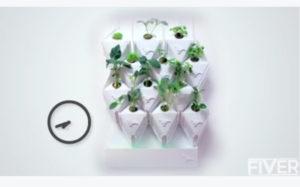 verticalgreen